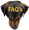 dognostication faq